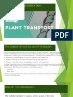 Transport in Plants.pptx