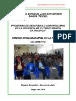 ESTUDIO DE LAS ORGANIZACIONES.docx