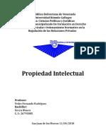 Propiedad Intelectual.docx