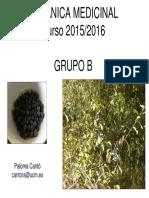 BOTÁNICA MEDICINALpresentación Paloma Canto.pdf