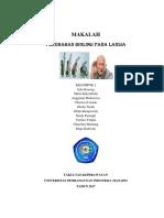 MAKALAH PERUBAHAN BIOLOGI PADA LANSIA.docx