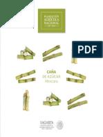 B_sico-Ca_a_de_az_car.pdf