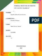 APARATO FONADOR.docx