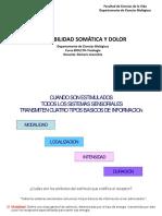 CLASE SENSIBILIDAD SOMATICA-178.pdf