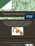 1. Principios-Presupuestarios