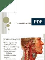 Carótida Interna y Subclavia.pptx