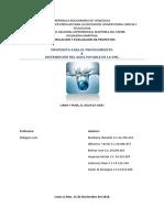 FEP FASE I II III.docx