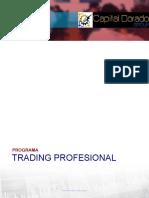 PROGRAMA CURSO TRADING PROFESIONAL - ACADEMIA.pdf