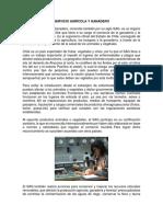 SERVICIO AGRÍCOLA Y GANADERO.docx