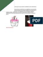 imforme calorimetro 1.1.docx