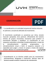 Fisio Neuro Coordinación