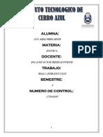 E_Pérez_Reyes_Luz_Areli_T1.pdf