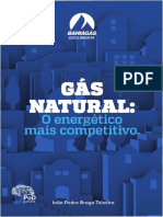 LIVRO_Gas_natural_o_energetico_mais_competitivo.pdf