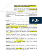 Acta de Constitucion de La Organizacion Comunal