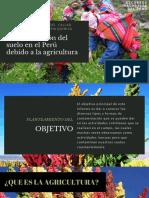 Contaminación Del Suelo en El Perú Debido a La Agricultura