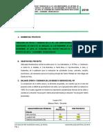 PERFIL DE V.A ANTA 2019.docx
