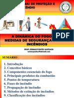 1 - A DINAMICA DO FOGO.pdf