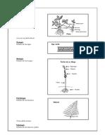 Introducción a La Biología 1RO SECUNDARIA DIA 2