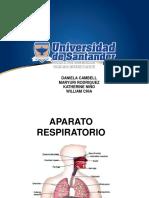 ANTROPOLOGIA-APA-RESPIRATORIO -  [Autoguardado].pptx