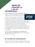 Los 10 tipos de contaminación.docx