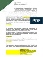 trabajo de word DENTIFRESH borrador para evaluacion.docx