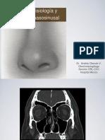 Anatomia y Fisiologia Nasal