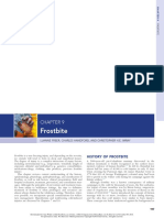 Auerbach - Frostbite.pdf