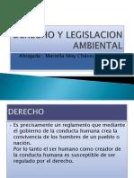 DERECHO Y LEGISLACION AMBIENTAL (1).pptx