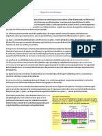 Infecto.pdf