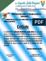 CERTIFICADO AIP.docx