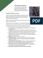 LOS TRASTORNOS DEL HÁBITO ALIMENTICIO.docx