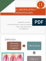286250808-Fisura-Labipalatina-y-Fonoaudiologia.pptx