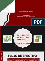 Flujo de Efectivo Cash Flow