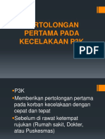 p3k (1)
