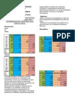 cromatografia en capa fina (1).docx
