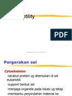 sitoskeleton_ppt.ppt