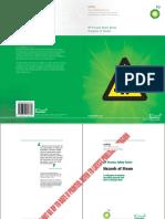 BP Process Safety Hazards of Steam.pdf