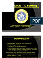 Materi Kuliah - Jaundice (Icterus)(Revisi)