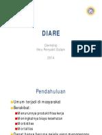 07.Diare.pdf