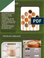 Cereales y Sus Procesamientos
