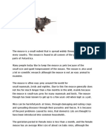 the mouse.docx
