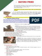 METALELE..PROIECT EDUCATIE TEHNOLOGICA.docx