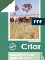 Cruzamento-em-gado-de-corte.pdf