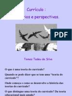 curriculo_cenarios_perspectivas