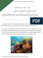 La Importancia de Los Arrecifes de Coral, Para El Equilibrio Medioambiental – Pensemos Verde