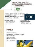 GM crops