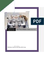 Pulse Report Paper.docx