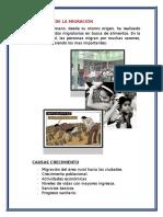 CAUSAS DE LA MIGRACIÓN.docx