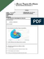REPASO GCSS NATURALES.docx