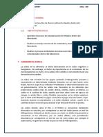 IMFORME ANQ - 400 ACIDEZ.docx